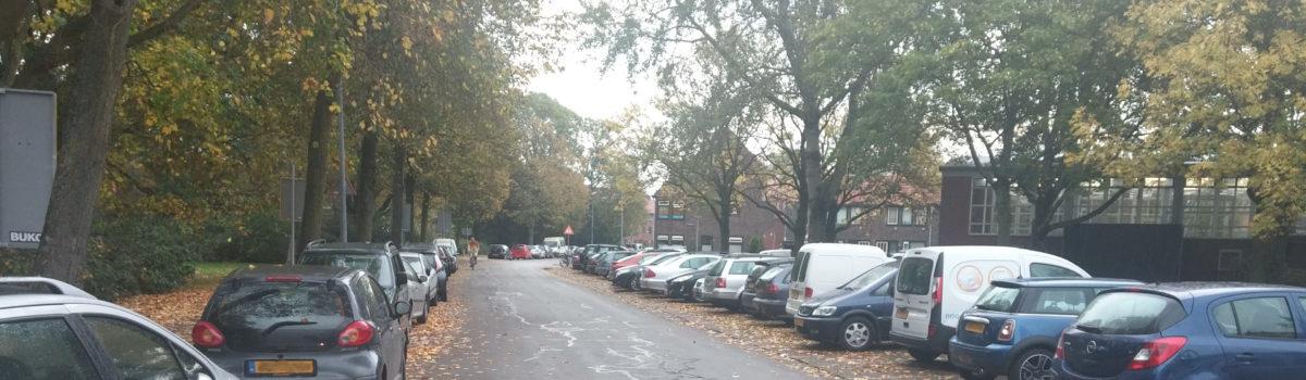 Betaald parkeren, met draagvlak